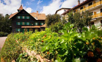 Auszeit im Kloster Natursinne