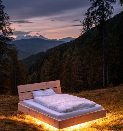 Alpenzirbe- Heilkraft aus der Natur!